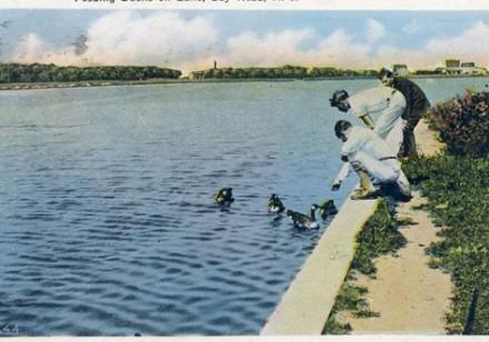 postcards3